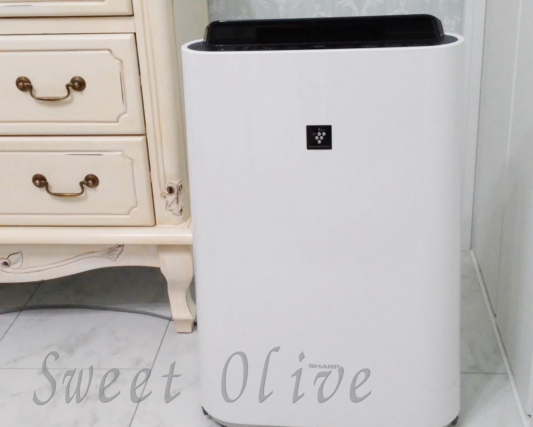 空気清浄器,自宅ネイルサロン,花粉症