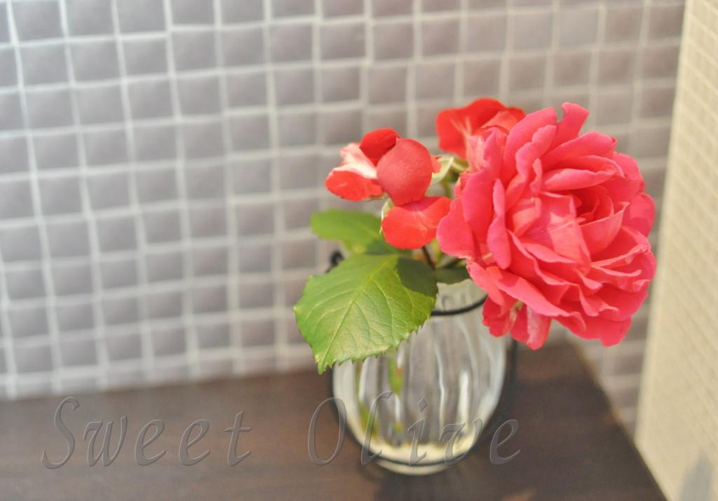 一輪挿し,薔薇,バラ