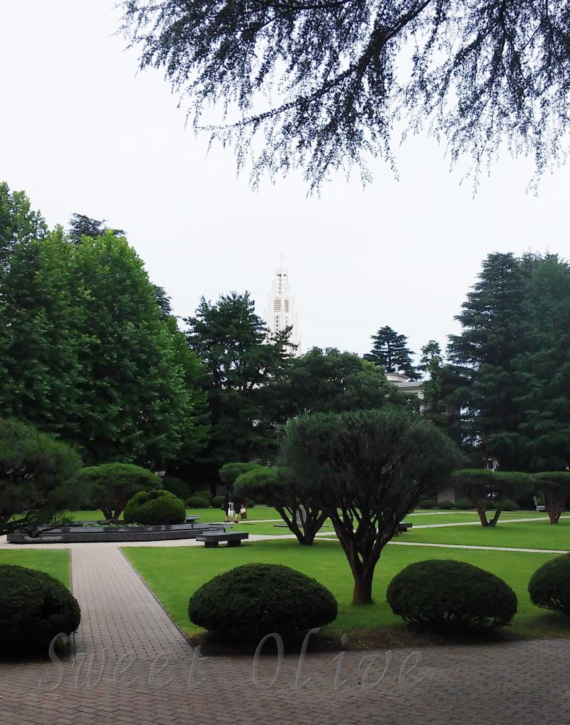 東京女子大学,キャンパス,自宅ネイルサロン