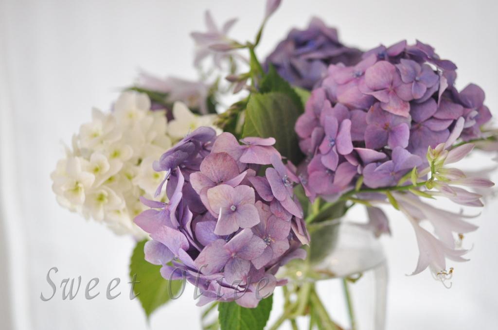 あじさい,アジサイ,紫陽花,紫,白,西洋,切り花,自宅ネイルサロン