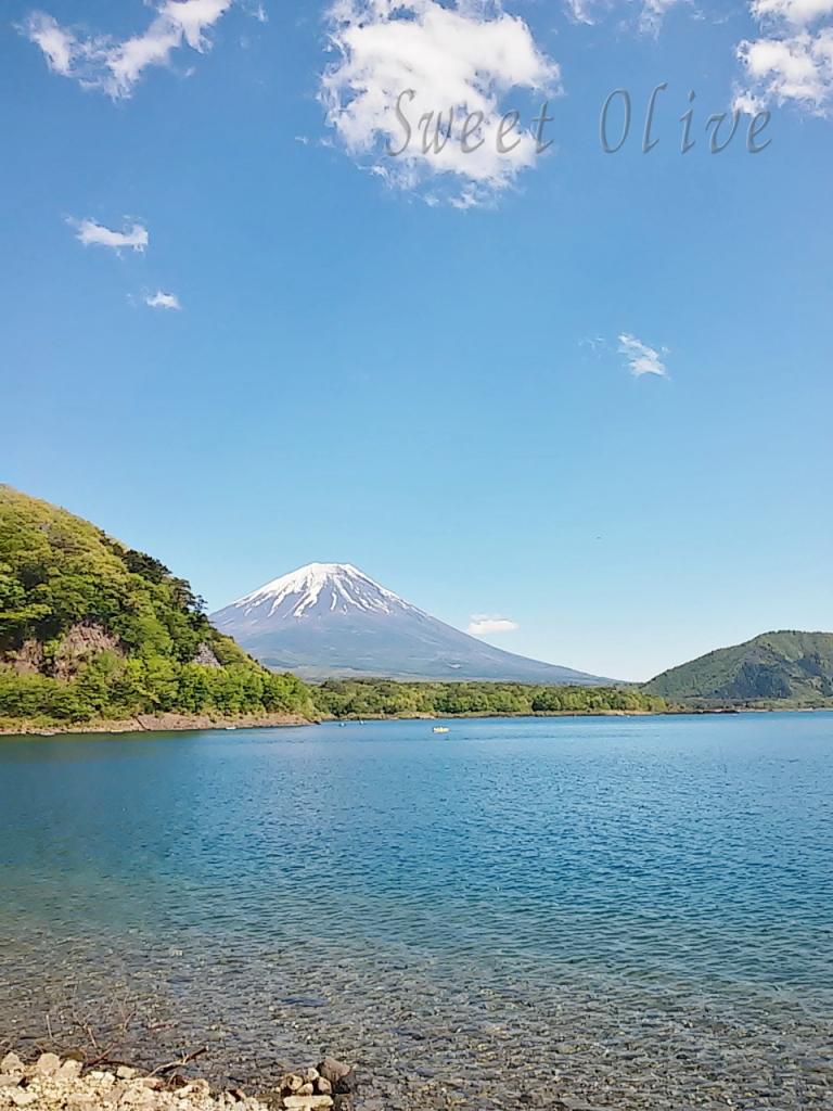 富士山,本栖湖,本栖レークサイドキャンプ場